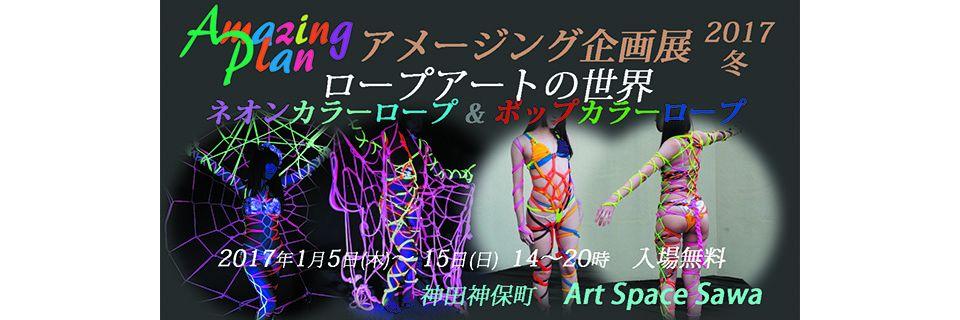 アメージング企画展 2017冬 ロープアート の世界