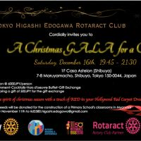 Christmas Gala for a Cause