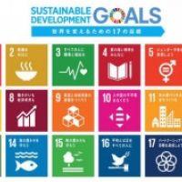SDGsを理解するからSDGsで取組むための講座とワークショップ  「SDGsを活用した企業、自治体、学校・大学、市民での課題解決に向けて」